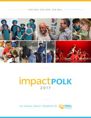 Impact Polk 2017 Publication