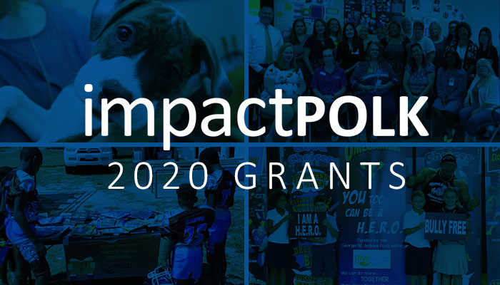 Impact Polk 2020 featured image